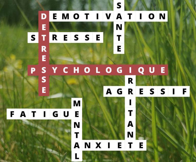 Read more about the article «Détresse psychologique»: les maux ont un sens.